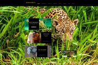 Michael Gruenwald, BIODIVERSITY - Wildlife Photographer
